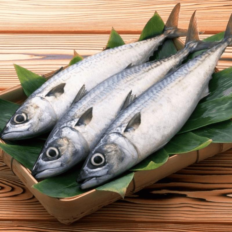 Mua cá thu tươi tại Vũng Tàu